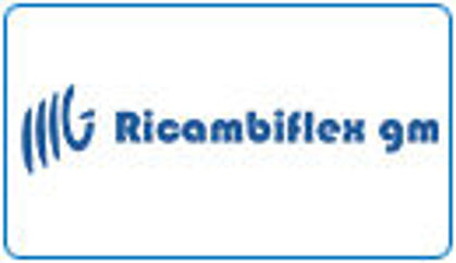Picture for manufacturer RICAMBIFLEX